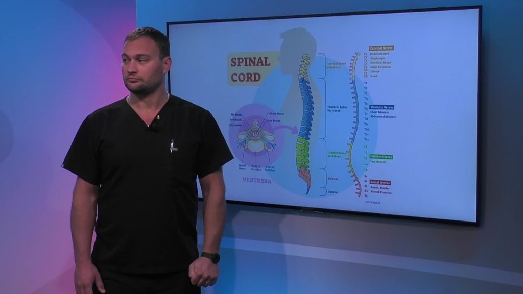 Function of the Thoracic Spine